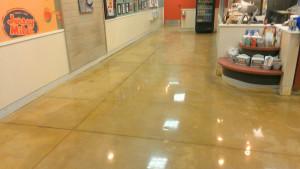 D Polished Concrete